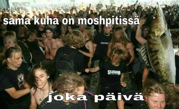 Kuva 6. Pekka pouta moshpitissä -meemi kohtaa Kuha-meemin lokakuussa 2015.
